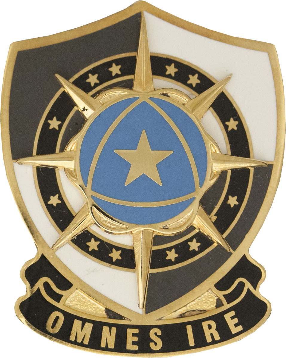 Cyber Protection Brigade Unit Crest (Omnes Ire)